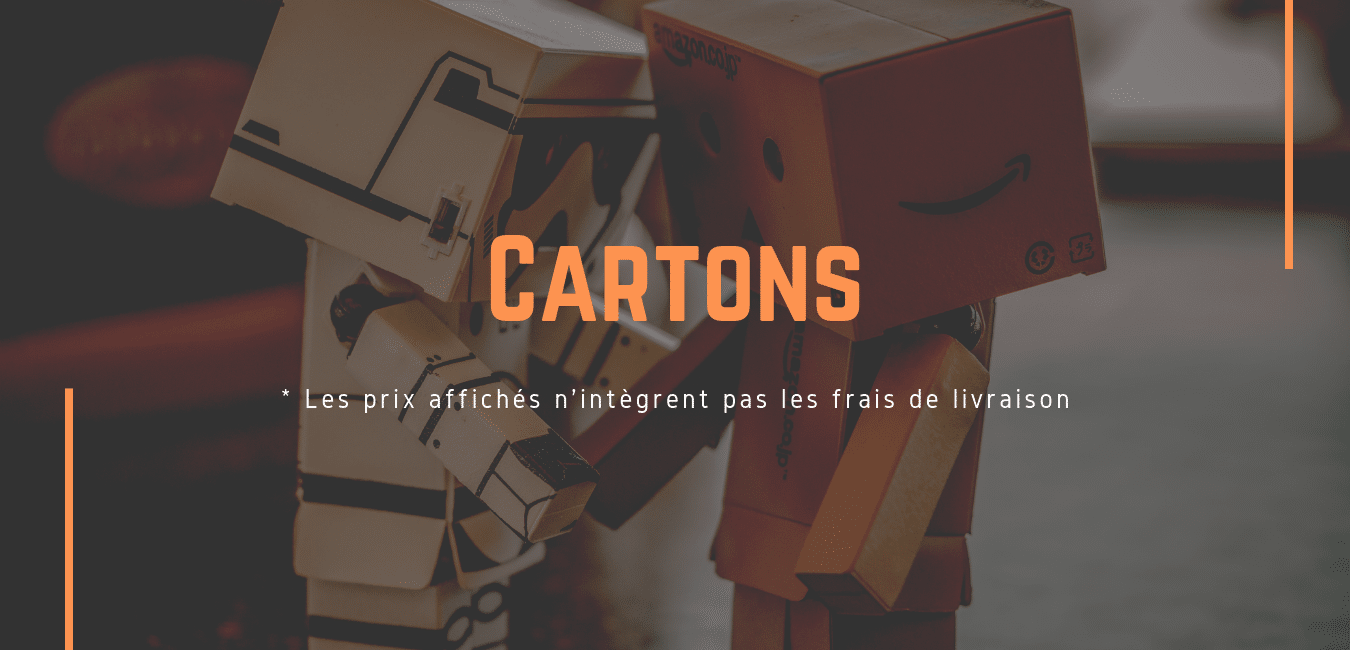 Transport de cartons et boxes entre la France et Londres